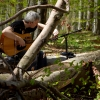 Guitar & Forest - April 2012